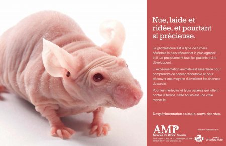 French Poster_Nude Mouse