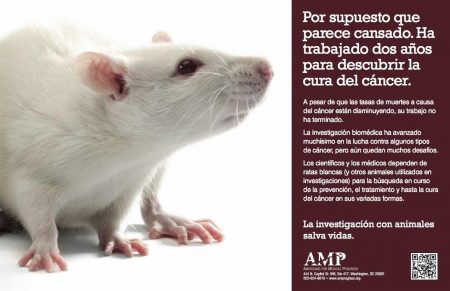 Spanish Poster White Rat_QR_small
