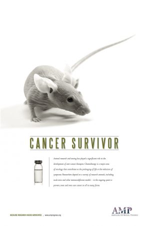 cancer_survivor